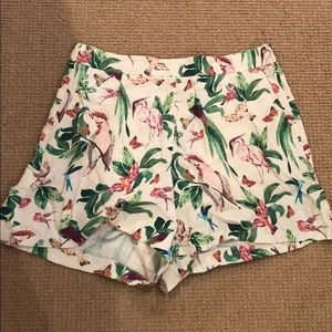 Ann Taylor Birds of Paradise Shorts